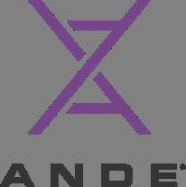 Rapid DNA